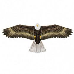 WIND N SUN EAGLE