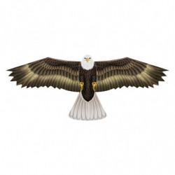 XKITES BIRDS OF PREY (12)...
