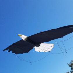 REVOLUTION EAGLE (nu)