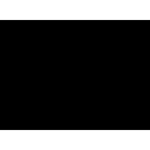 Sunflex